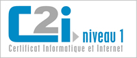 Logo C2I Niveau1