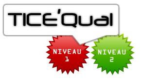 TiceQual